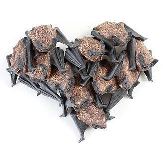 Ceramic pipistrelle bat sculpture by Geckoman, John Noble-Milner, wildlife sculptor and artist