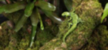 bronze gecko sculpture