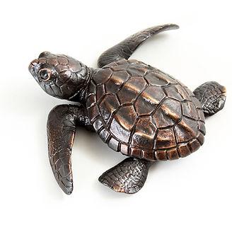 Bronze turtle sculpture by Geckoman, John Noble-Milner, wildlife sculptor and artist
