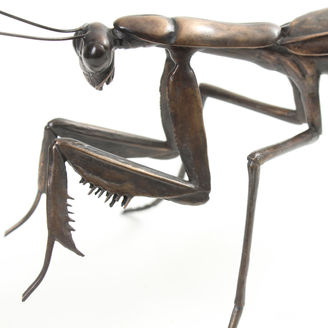 Bronze praying mantis sculpture by Geckoman, John Noble-Milner, wildlife sculptor and artist