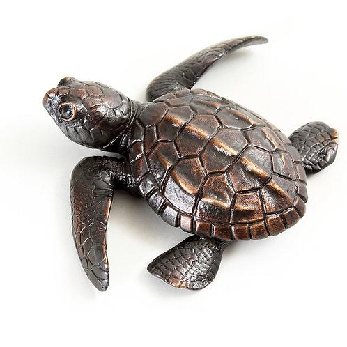 turtle hatchling - bronze