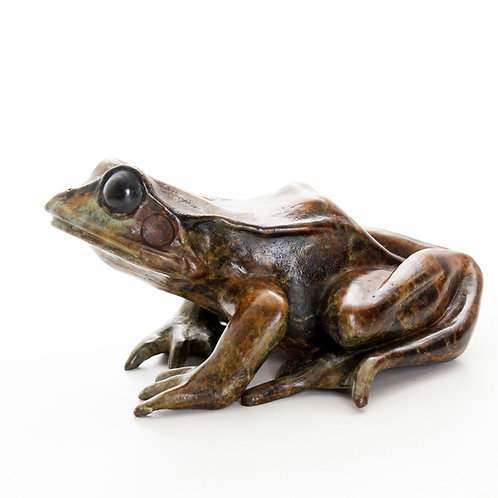 common frog looking up - limited edition bronze