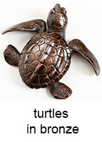 turtles_in_bronze_143_18pt_text.jpg