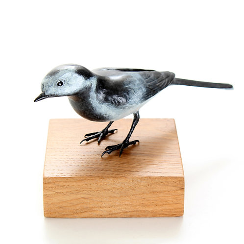 pied wagtail, male - limited edition bronze
