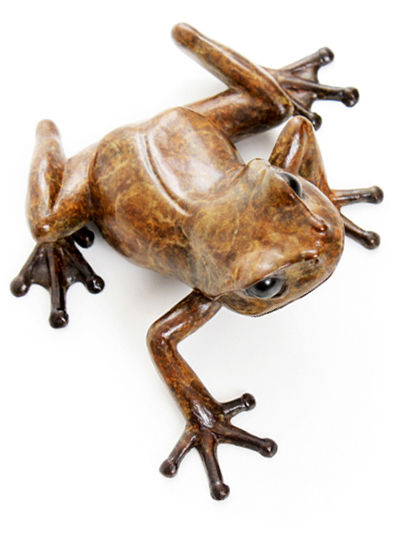 bronze tree frog sculpture