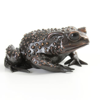 Bronze toad sculpture by Geckoman, John Noble-Milner, wildlife sculptor and artist