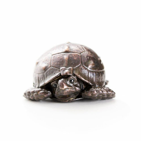 tortoise hatchling with head tucked in - bronze