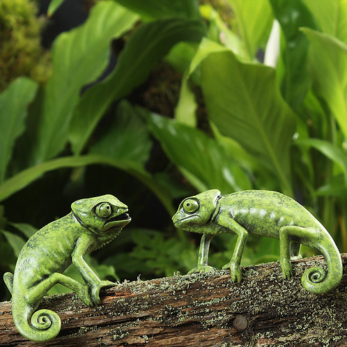 greeting card - two chameleons (code P08)