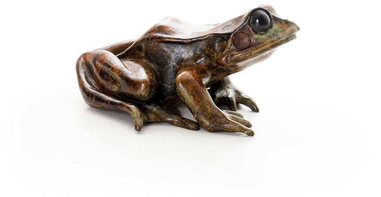 bronze frog sculpture by geckoman