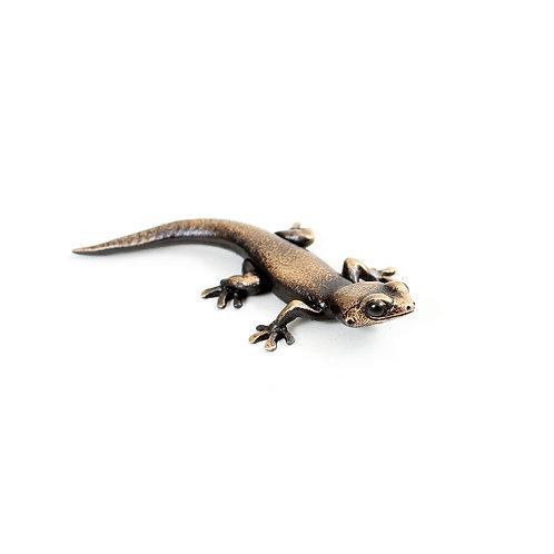gecko - size 1 - bronze