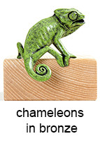 chameleons_in_bronze_143_18pt_text.jpg