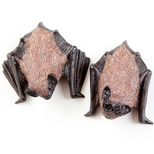 pair of pipistrelle bats Nos.2 & 3 - stoneware pottery - ORDERS TAKEN