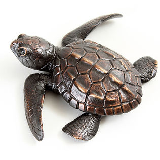 Bronze tortoise and turtle sculpture by Geckoman, John Noble-Milner, wildlife sculptor and artist