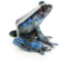 bronze_frog_sculpture_blue.jpg