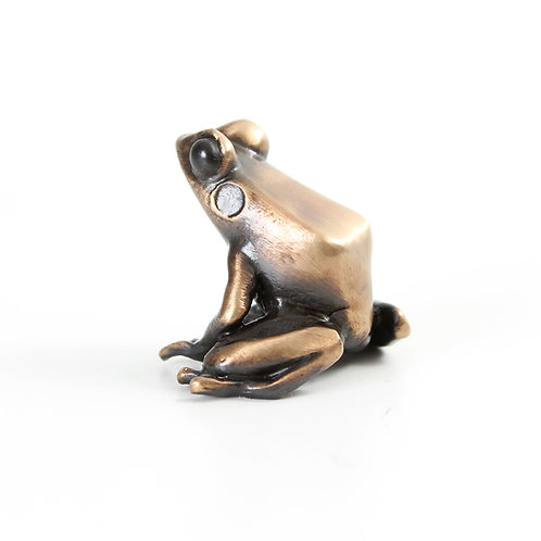 poison dart frog in bronze - small