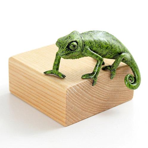chameleon, juvenile - 'Enrapt' - limited edition bronze