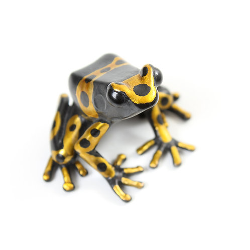 poison dart frog in bronze - medium - leucomelas