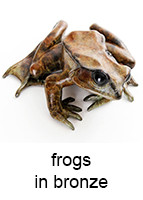 frogs_in_bronze_143x200_18pt_arial.jpg