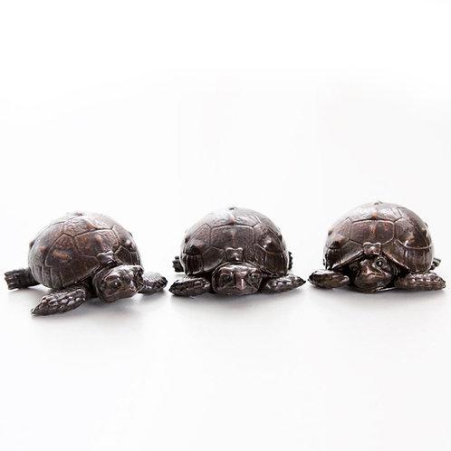 three tortoise hatchlings - bronze - ORDERS TAKEN