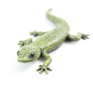Bronze gecko lizard sculpture by Geckoman, John Noble-Milner, wildlife sculptor and artist