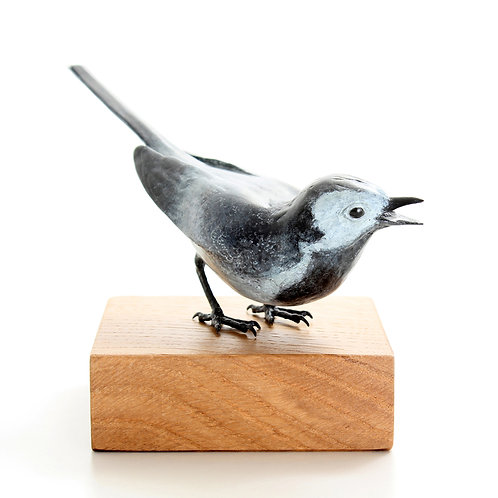 pied wagtail, female - limited edition bronze