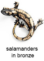 salamanders_in_bronze_143_18pt_text.jpg
