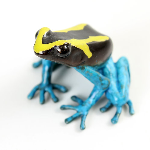 poison dart frog in bronze - medium - tinctorius
