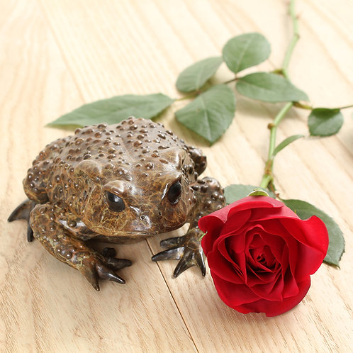 greeting card - toad with red rose (code P03)