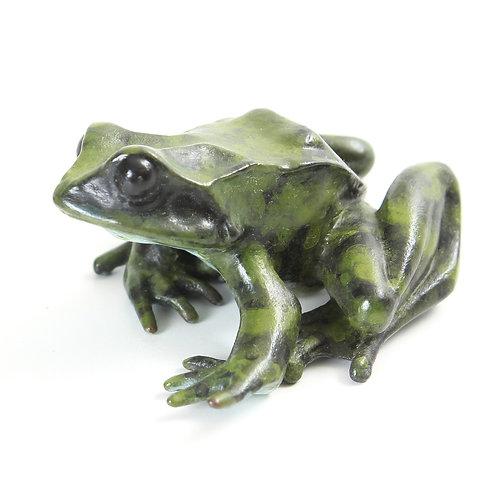european common frog in bronze - large
