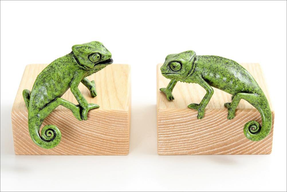 chameleons 'Agape' & 'Enrapt'