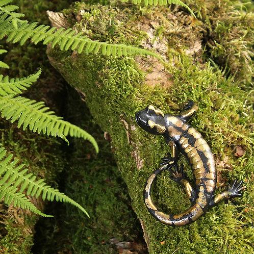 greeting card - salamander (code P09)