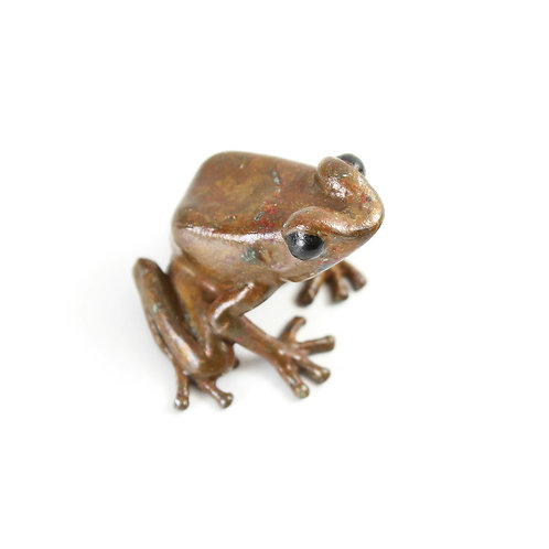 poison dart frog in bronze - small - brown