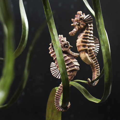 greeting card - seahorses facing each other (code P20)