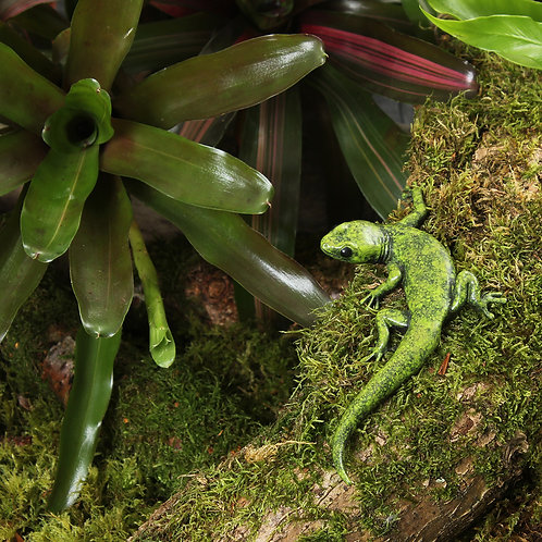 greeting card - green gecko (code P06)