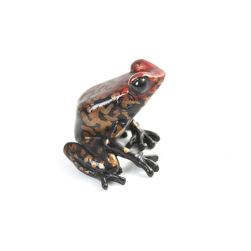poison dart frog in bronze - small - redhead