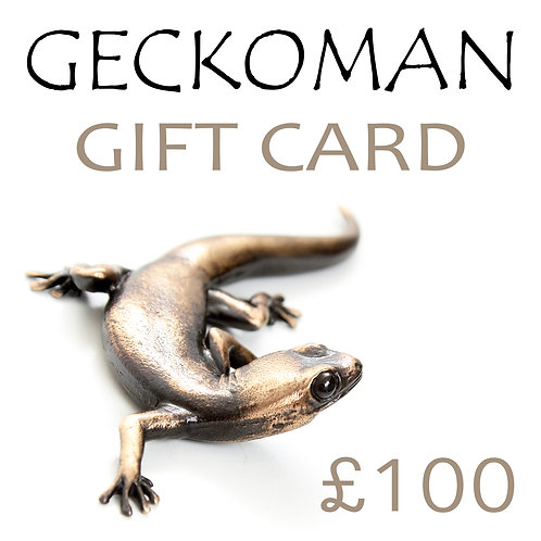gift voucher/card £100