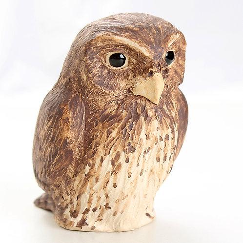pygmy owl - stoneware pottery