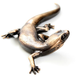 Bronze gecko lizard sculpture by Geckoman, John Noble-Milner, wildlife sculptor and artist