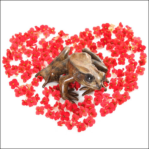 greeting card - frog & red flowers heart (code P05)