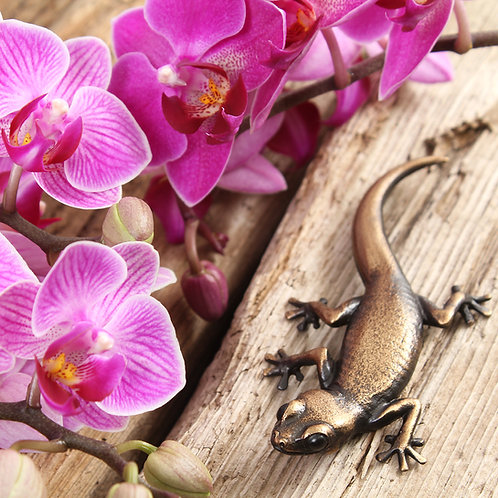 greeting card - gecko with orchids (code P01)