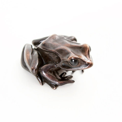 european common frog in bronze - small