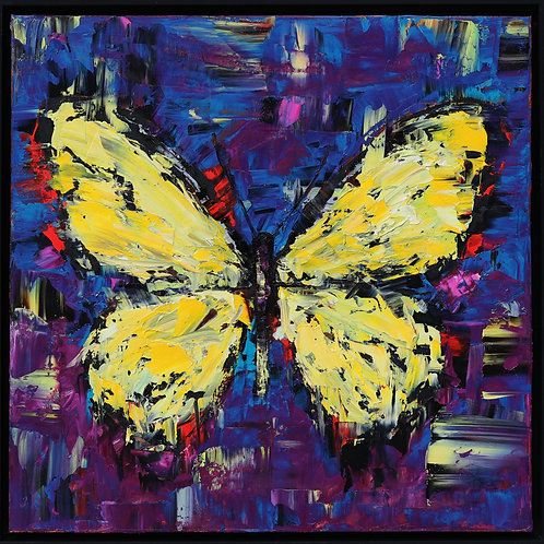 """Yellow Butterfly, 20""""x20"""""""