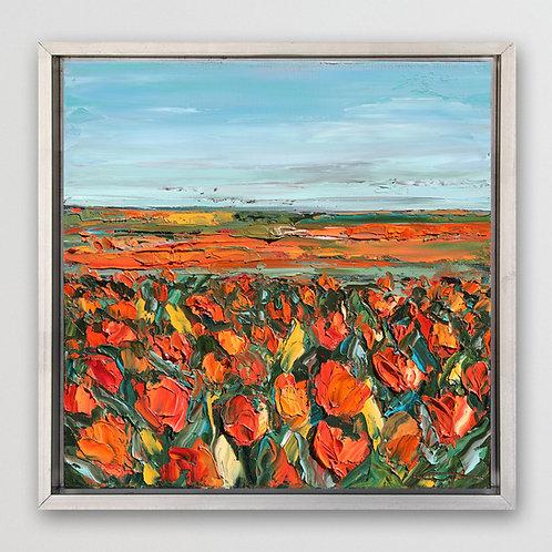 "California Poppy Field, 12""x12"""