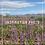 "Thumbnail: Anza-Borrego Desert, 12""x12"""