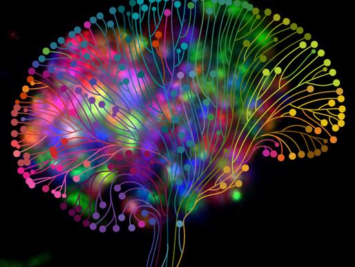Brains, Music & More