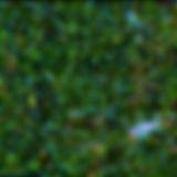 QutubLab_ColorScheme.jpg
