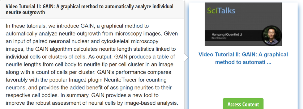 GAIN neuron counting tool highlighted