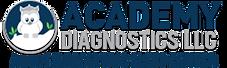 AcademyDiagnostics.png