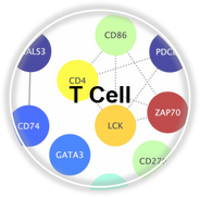 TCell_CLL.png