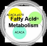 Metabolism_FattyAcid_CLL.png